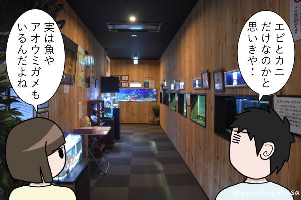 和歌山県 道の駅 すさみ エビとカニの水族館 廊下 水槽