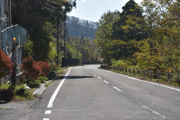 和歌山県 道の駅 田辺市龍神ごまさんスカイタワー 道路