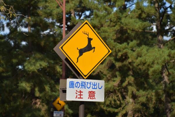 奈良公園 標識 鹿飛び出し注意