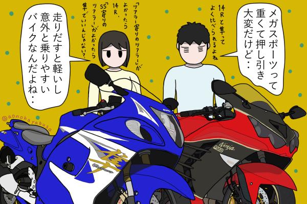 バイク メガスポーツ スズキ 隼 カワサキ Ninja ZX-14R バイクを眺める人