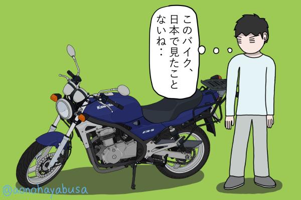 カワサキ バイク ネイキッド ER-5 バイクの傍に佇む人
